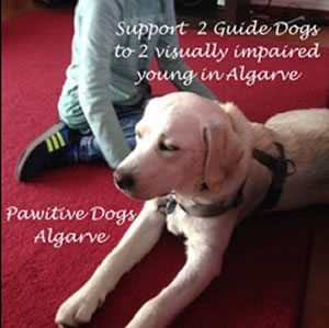 Pawsitive Assistance for young visually impaired