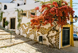 Authentic Algarvean features of the small Estoi cottages
