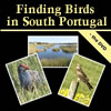 Finding birds in south Portugal by Dave Gosney on DVD