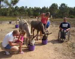 Sally & Matt (Right) Feed The Donkeys, With A Little Help