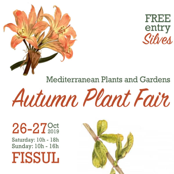 Mediterranean Autumn Garden Fair - Oct 26th & 27th