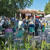 Mediterranean Gardeners throng to São Bras for Garden Fair