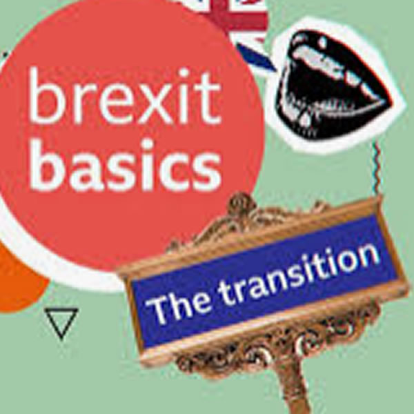 Brits, Brexit and the transition period