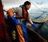 fishingNorthSea