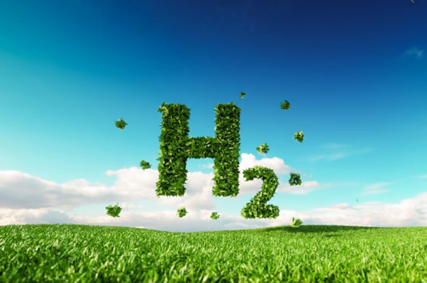 PORTUGAL AND NETHERLANDS WORK TOGETHER TO EXPORT GREEN HYDROGEN