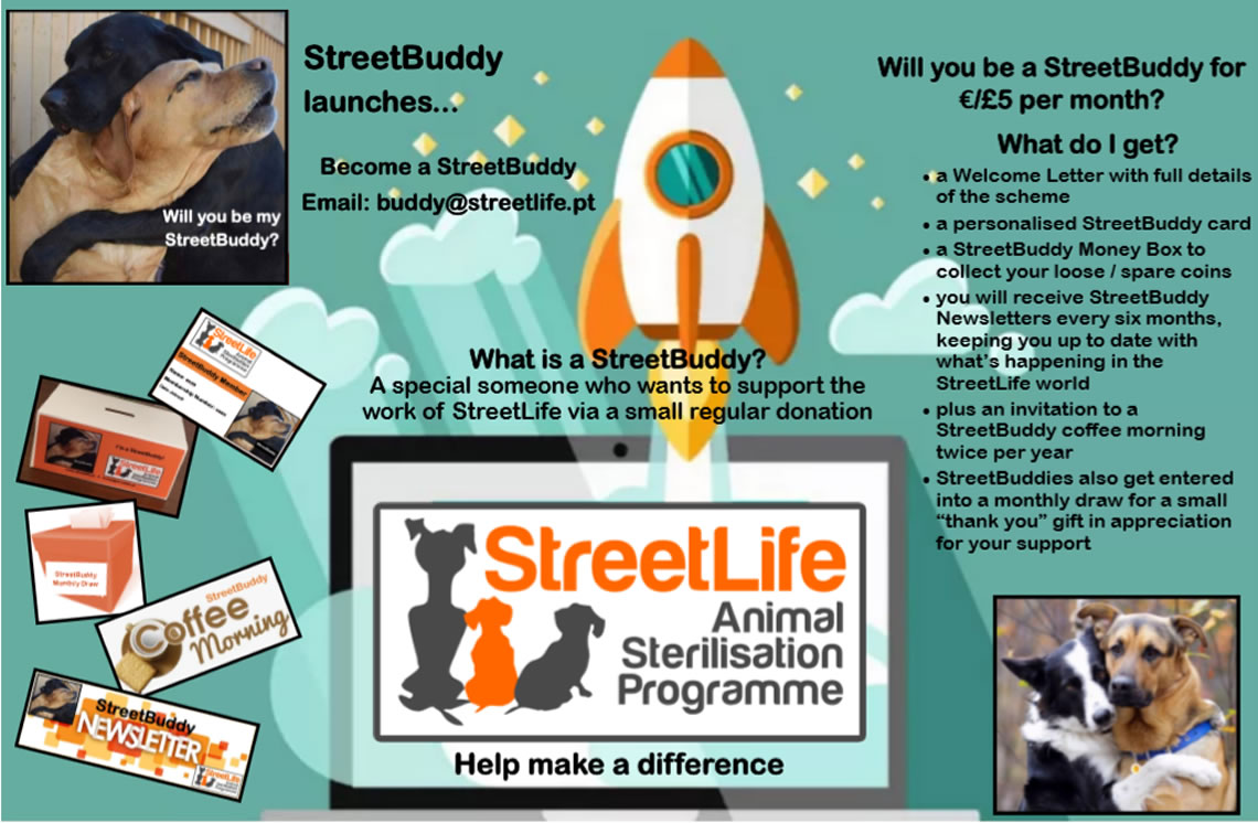 Will you become a StreetBuddy?