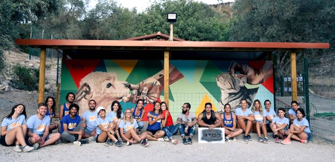 Artists paint mural for animal welfare
