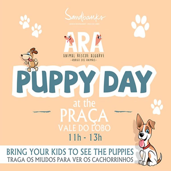 Puppy Days at Vale do Lobo - Sept 1, 15 & 29