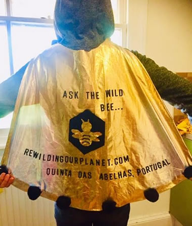 Deborah's bee cape