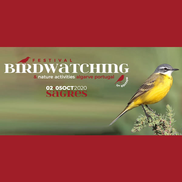 The Bird Watching Festival is back - Oct 2nd to 5th
