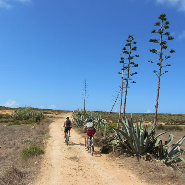 Algarve Bike Rides - Explore the unspoilt areas of Algarve by bike